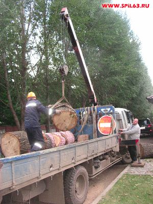 Цена на удаление деревьев, условия сотрудничества