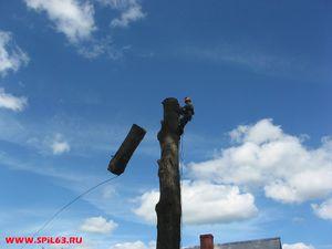 Предоставление услуг по спилу сухих и аварийных деревьев в Самаре