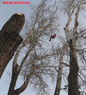 Безопасное удаление деревьев специалистами-высотниками (г.Самара)
